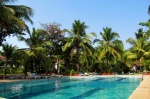Holiday in villa Viola Riviera with swimming pool in Cavelossim beach South Goa  Viola Riviera (#2037)  Goa, South, Cavelossim - Territory, swimming pool