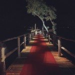 @instagram: Red carpet to getting lost