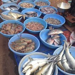 @instagram: #arpora#fishmarket#goa#india