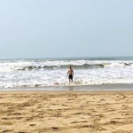 agonda india goa beach nature