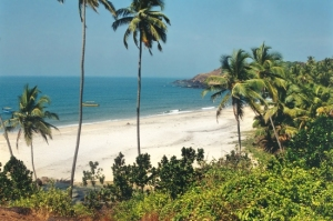 Cavelossim – the southern resort of Goa