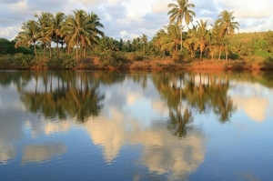 The lake in Arambol
