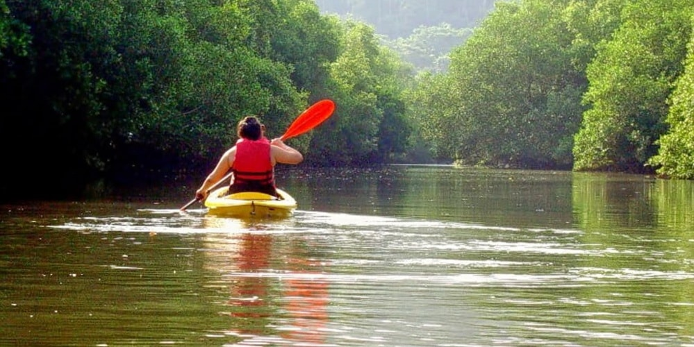 Goa Kayaking
