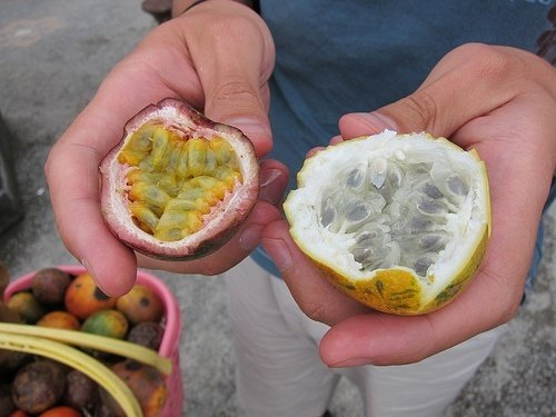 Passion fruit in Goa